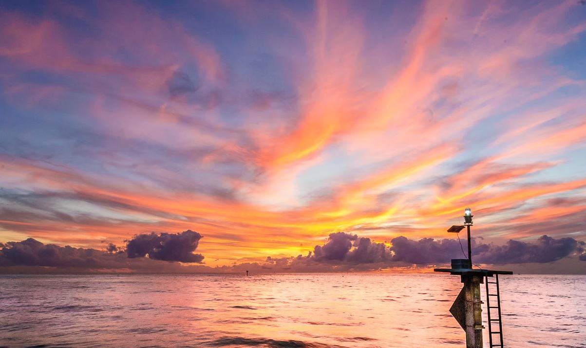 Gulf Coast Crusies