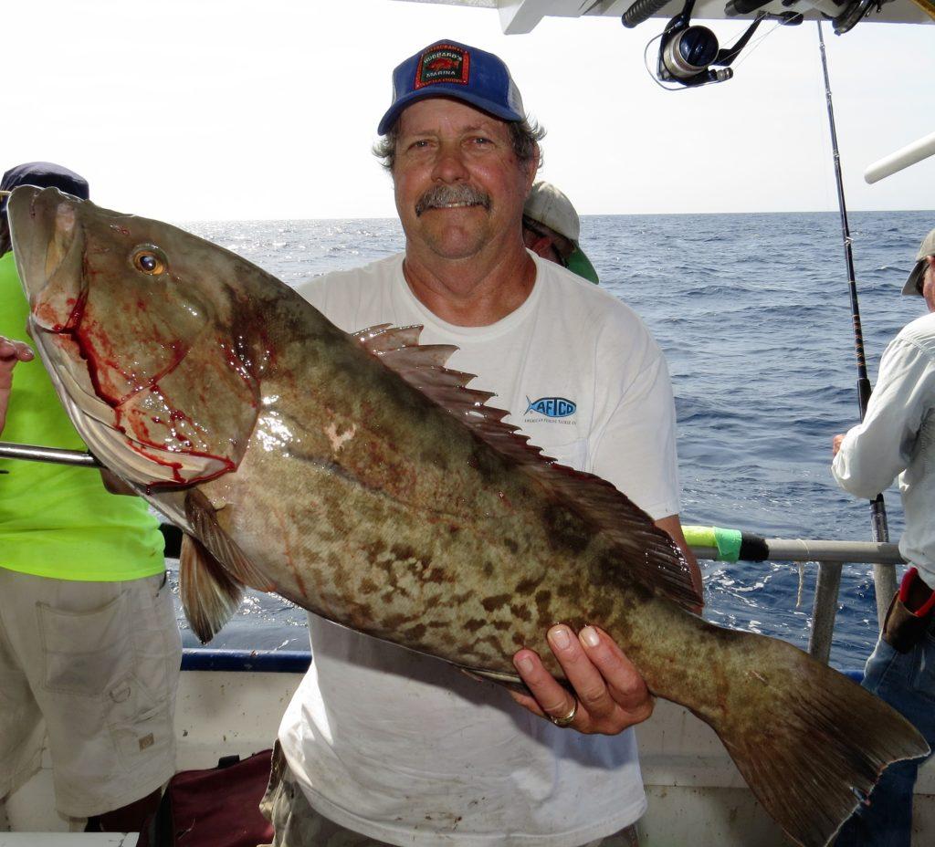 Hubbard 39 s marina fishing report 6 24 16 deep sea fishing for Deep sea fishing johns pass