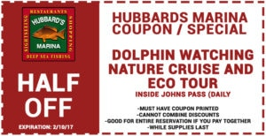 Hubbard's Marina Dolphin Watching Coupon