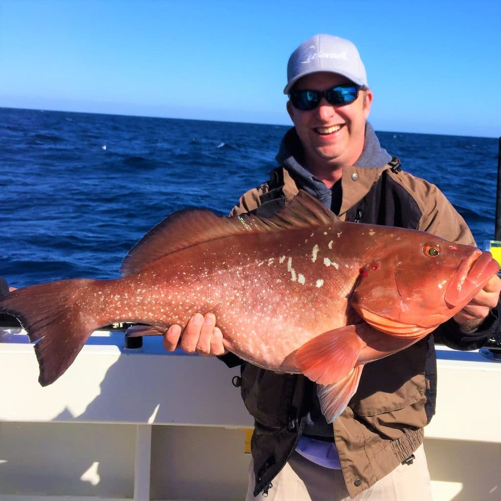 Hubbard 39 s marina fishing report 4 14 17 deep sea fishing for Deep sea fishing johns pass