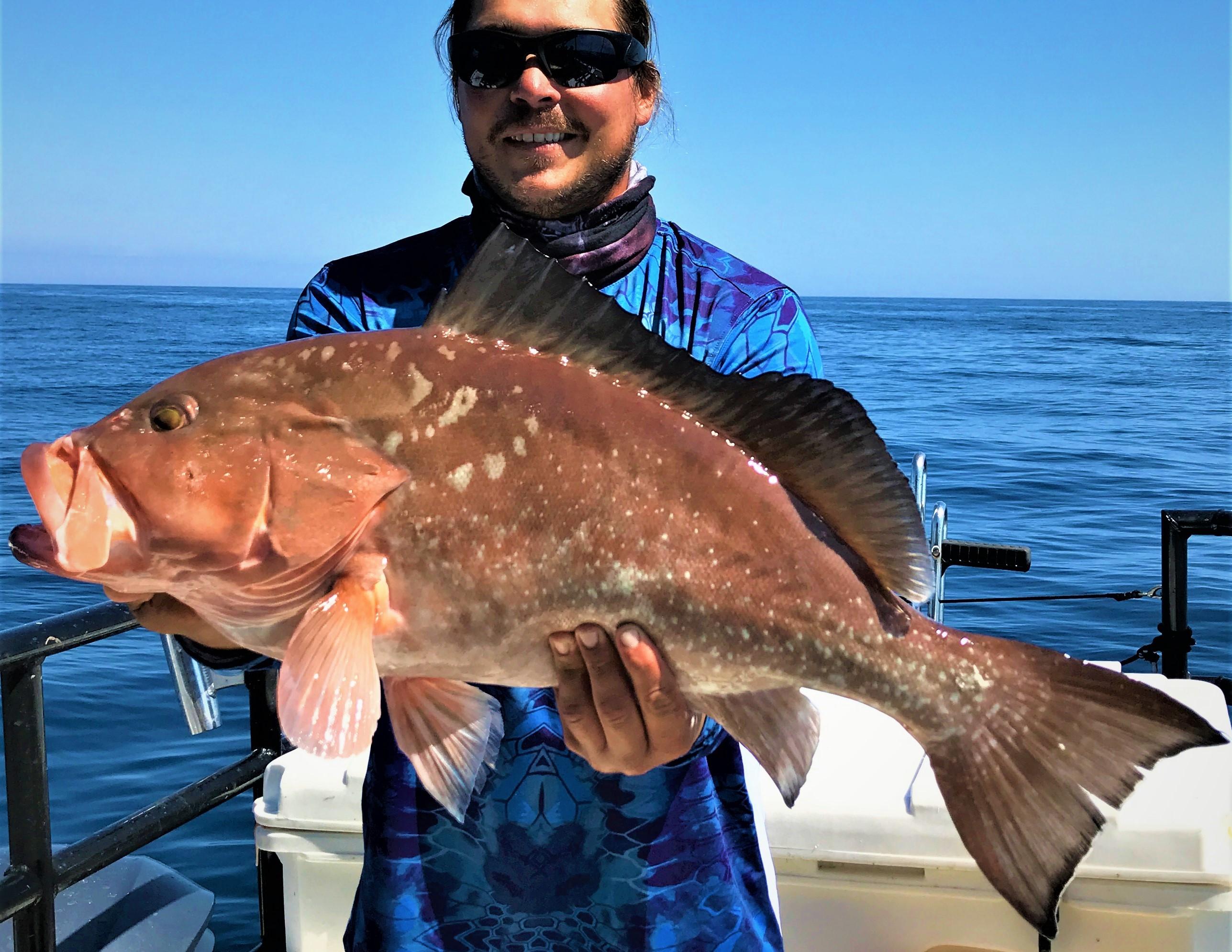 Hubbard 39 s marina fishing report 3 23 18 deep sea fishing for Deep sea fishing johns pass