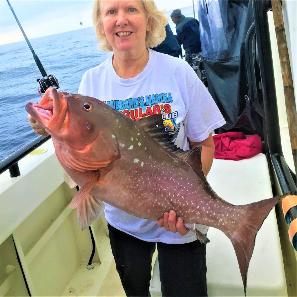 Hubbard 39 s marina fishing report 04 13 18 deep sea for Deep sea fishing johns pass