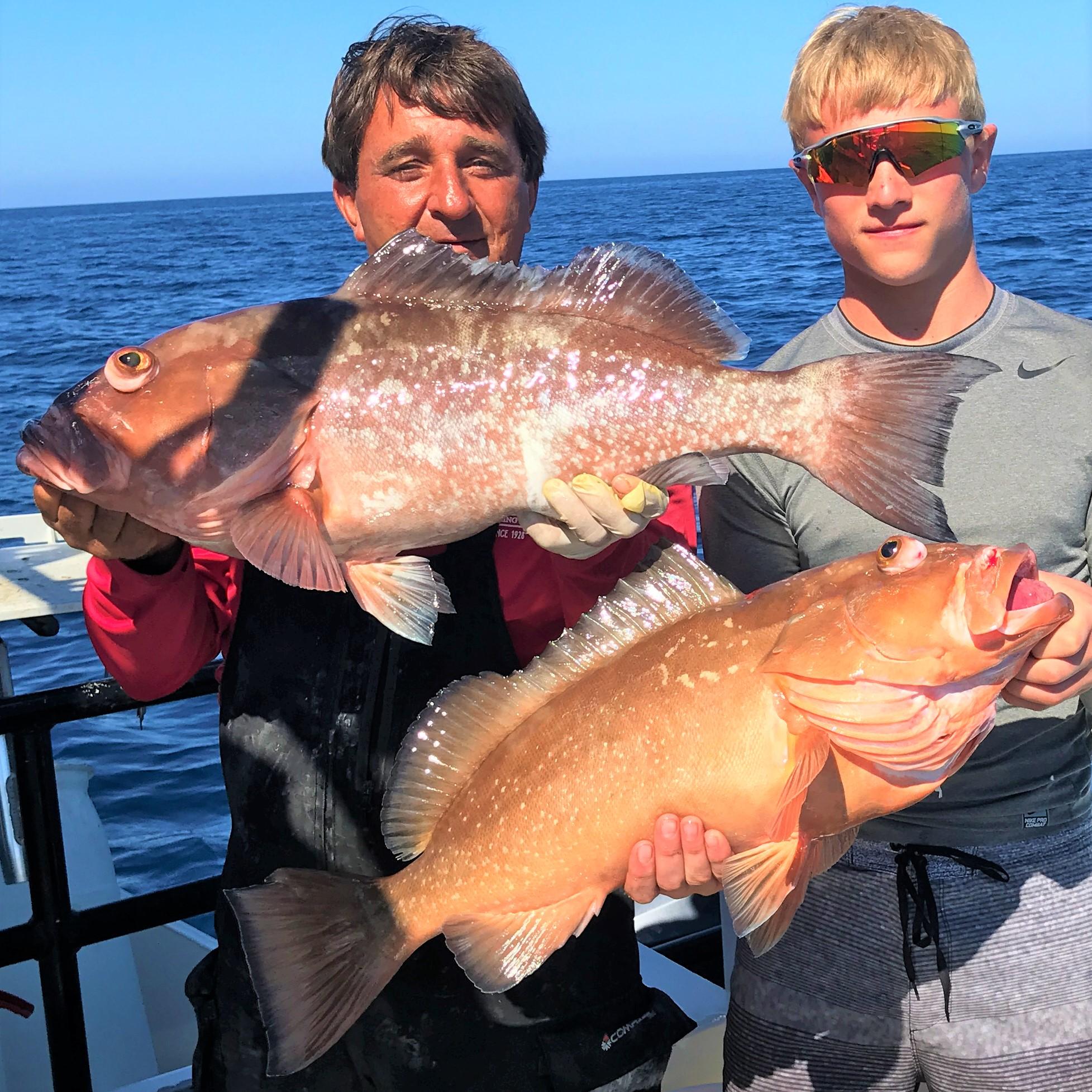 Hubbard 39 s marina fishing report 04 06 18 deep sea for Deep sea fishing johns pass