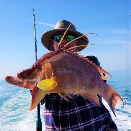 834115bc7f98a Hubbard s Marina Fishing Report 1-11-19 - Hubbard s Marina